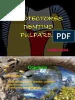 11 Protectores Dentino Pulpares..-1