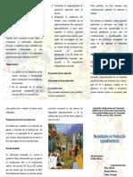 triptico-Necesidades-en-Produccion-Agroalimentaria.doc