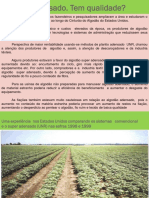 Palestra dia 13 8h - Colheita adensado - qualidade da fibra (Busa).pdf