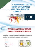 15. Desafíos y Ventajas Del Uso de Antioxidantes y Colorantes Naturales en La Industria Cárnica