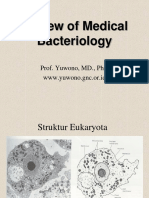 Bakteriologi 2015