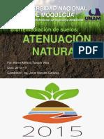 DIAPOS ATENUACION NATURAL.pdf