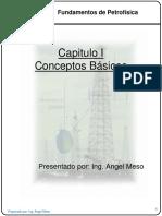 Capitulo I .- Conceptos Basicos.pdf