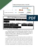 ANALISIS PROGRAMAS.docx