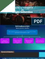 Carguio y Transporte (Suberraneo) (1)