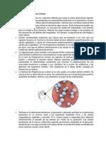Adherencia de La Capsula Bacteriana
