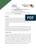 INFORME 3 EXTRACCIÓN DE ACEITES ESENCIALES (EUCALIPTO).docx