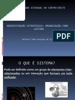 Adm Estratégica - Slides 01 ... Sistema Organizacional