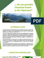 BIOLLEY - A.P. (1) (1).pdf