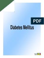 diabetes_mellitus.pdf