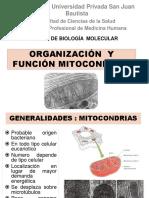 UPSJB CLASE Mitocondria