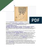 Neurociência.pdf
