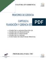 Guía de Contenidos VII-B Planeación y Gerencia Estratégica