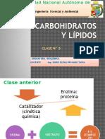 Clase 5 Carbohidratos y Lipidos