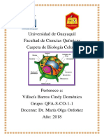 Biologia Celular Portafolio Basico