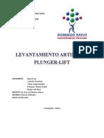 Sistema Plunger Lift