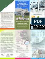 Conference Brochure- IDA
