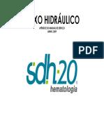 FLUXO HIDRAULICO SDH20