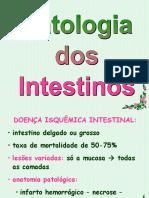 Patologia Dos Intestinos - Doencas Inflamatorias