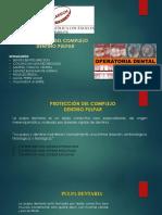 Exponer Operatoria Dental
