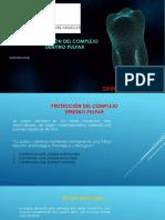 Protección Dentinopulpar (1)