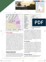 Tipo 1 (PDF)