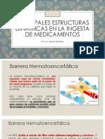 Principales Estructuras Dinámicas en La Ingesta de Medicamentos