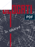 George Simion Blocati in Labirint