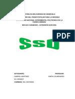 SSD Trabajo Redes