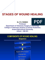 Stages Healing