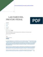 Fases Del Proceso Penal