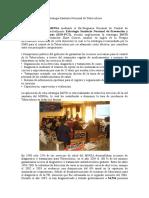 IntroduccionESNPCT (2).doc