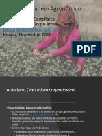 Manejo Agronomico Arandano UNASAM 2018