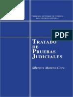 Tratado de Pruebas Judiciales