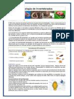 Folleto Zoología de Invertebrados 3º Curso Inaes 2019