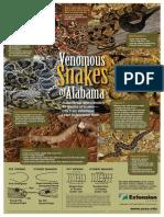 Venomous Snakes of Alabama