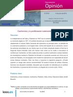 ARTICULO IEEE.- CACHEMIRA Y LA PROLIFERACION SUBMARINA DEL ÍNDICO