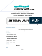 Monografia de Sistema Urinario. Adulto Mayor