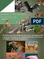 Mejoramiento Genético Para Animales en Peligro de Extinción