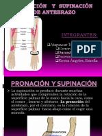 Pronación y Supinación de Antebrazo Exposicion