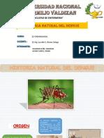 Historia Natural Del Dengue Corregido