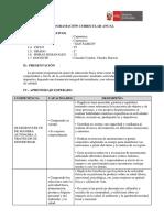 Programación Anual San Ramon 2019