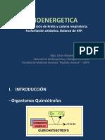 Bioenergetica 2014-II (1)