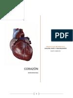 Proyecto de Informatica_heart