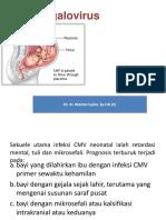 cytomegalovirus.pptx