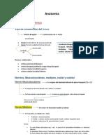 LOCOMOTOR Resumen PRO TP4.docx