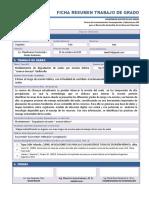 01. Plantilla Ficha Resumen TDG