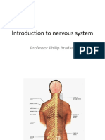 Introduction to Nervous System 2011