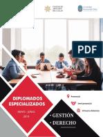 Brochure INCISPP.pdf