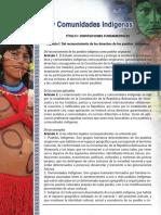 Ley Organica de Pueblos y Comunidades Indigenas